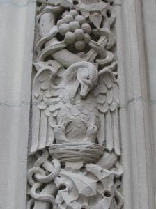 1. Pelican & Chicks, Princeton University Chapel, NJ