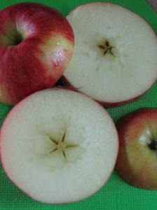 13. Sliced Apple